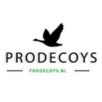 prodecoys